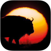 bison-bonasus-app-icon