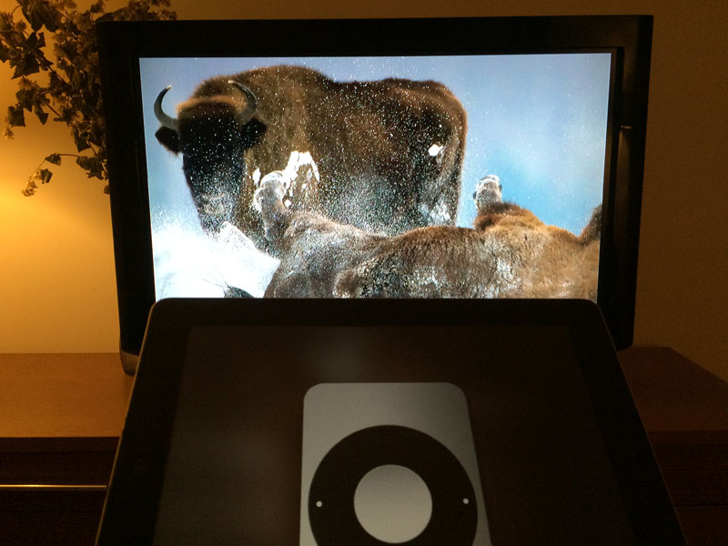 bison-bonasus-dual-screen-airplay