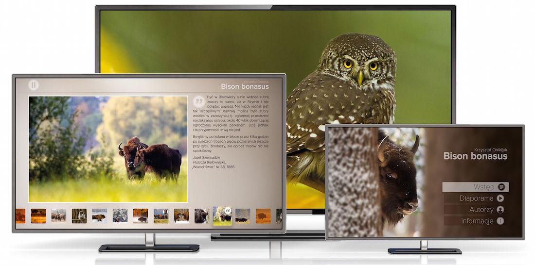 bison-bonasus_apple_tv