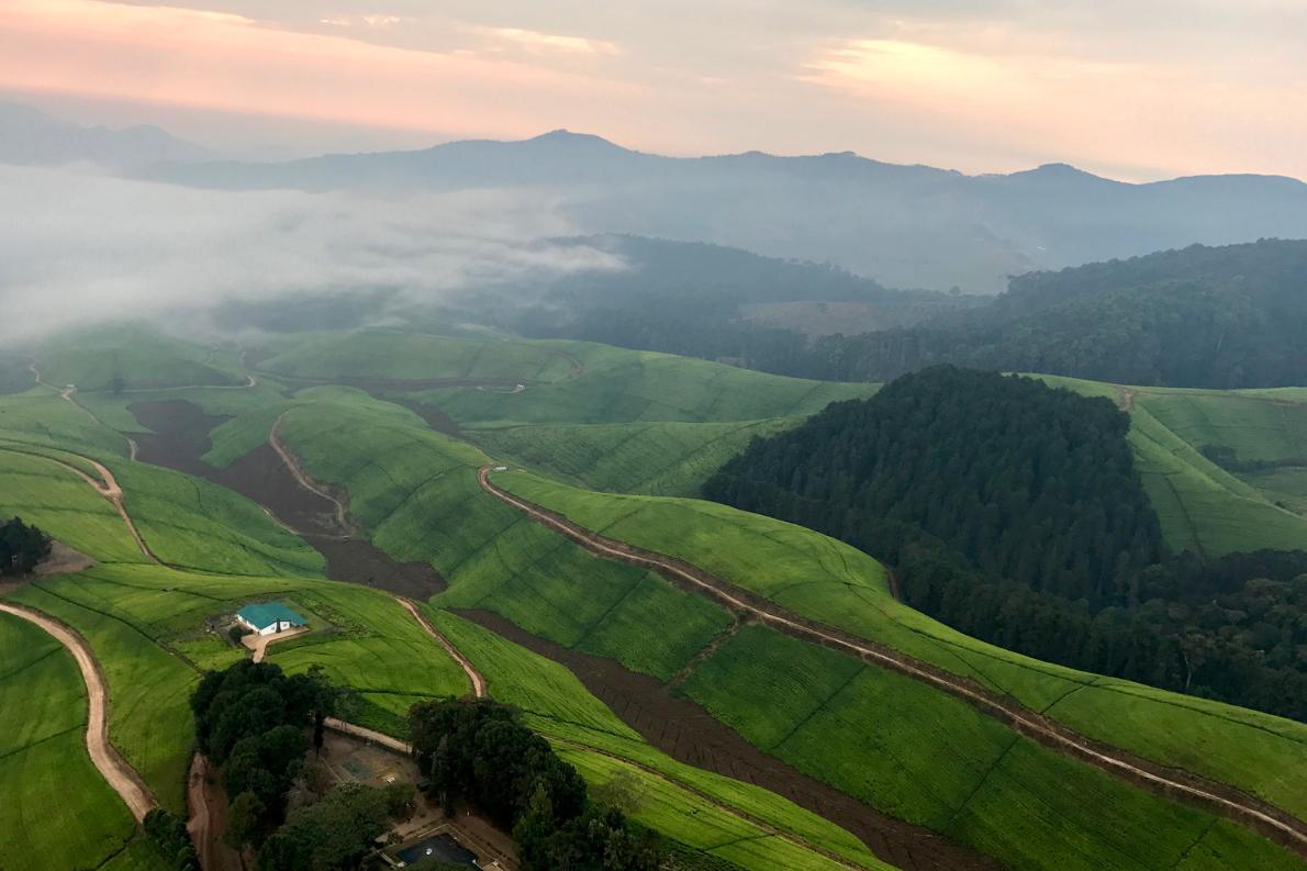 foggy-sunrise-rwanda-adapt-1190-1
