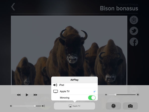 bison-airplay-ipad2