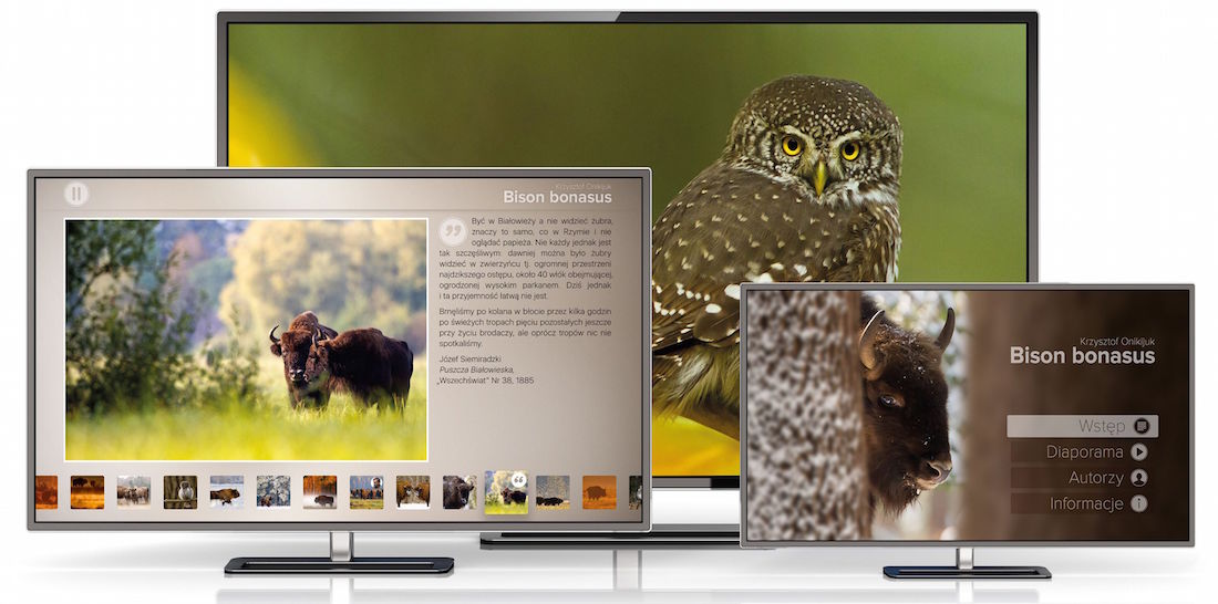 bison-bonasus_apple_tv